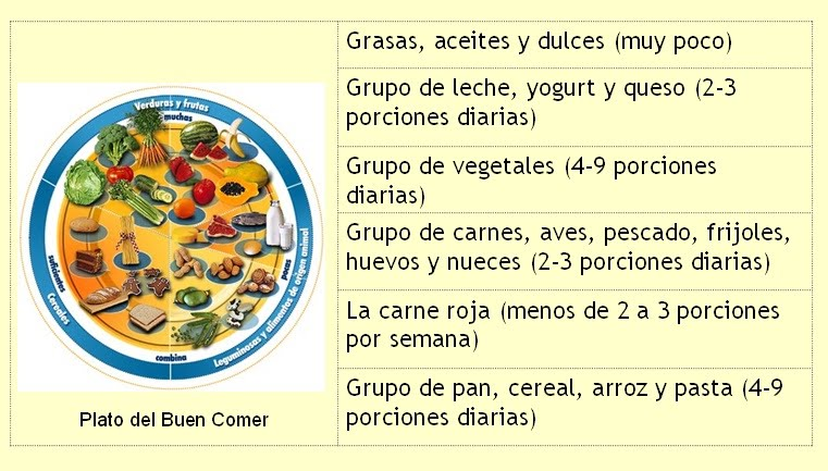 dieta vegetariana vs dieta carnivora